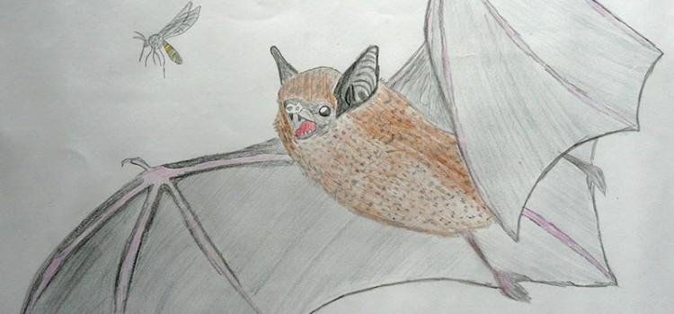 Победителите от детския конкурс за рисунка
